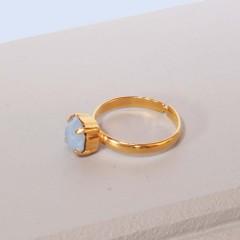 Ring no. 2